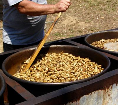 Boiling peanuts in a huge pot