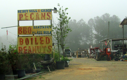 boiled peanuts bbq sandwiches pecans alabama florida georgia
