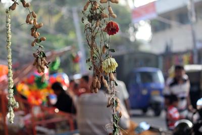 2011 Peanut Festival in Bangalore, India